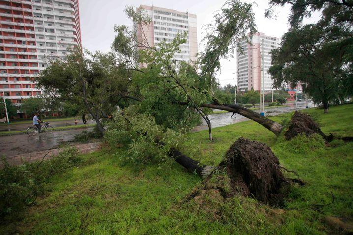 Das Wetter als Feind: Das nordkoreanische Regime kämpft aktuell mit den Folgen der Pandemie und Naturkatastrophen