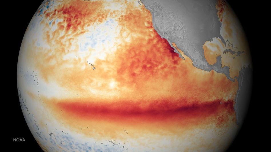 """Hitze im Pazifik beim letzten El Niño (2015): """"Extremereignisse werden noch extremer"""""""