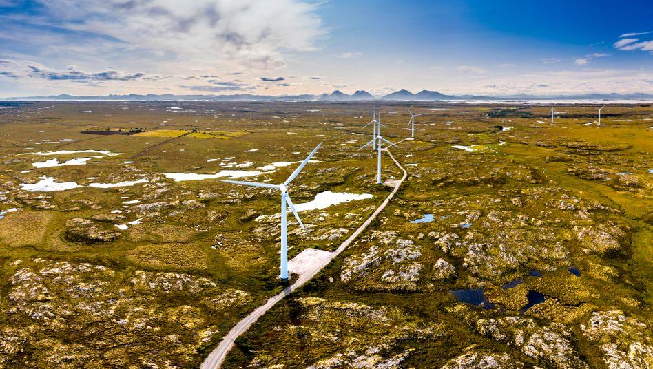 Windanlagen in Norwegen: Die skandinavischen Länder tun weltweit am meisten fürs Klima