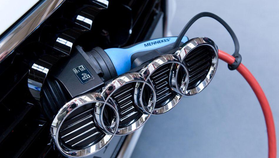 Vier Ringe: Viele BWL- und Ingenieursabsolventen wollen gern bei Audi arbeiten