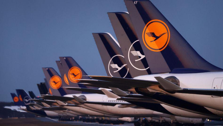 Lufthansa-Maschinen am Flughafen Frankfurt (im März 2020)