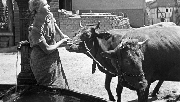 """Hessische Provinz: """"Bilder aus einer Zeit, die man gerne vergessen würde"""""""
