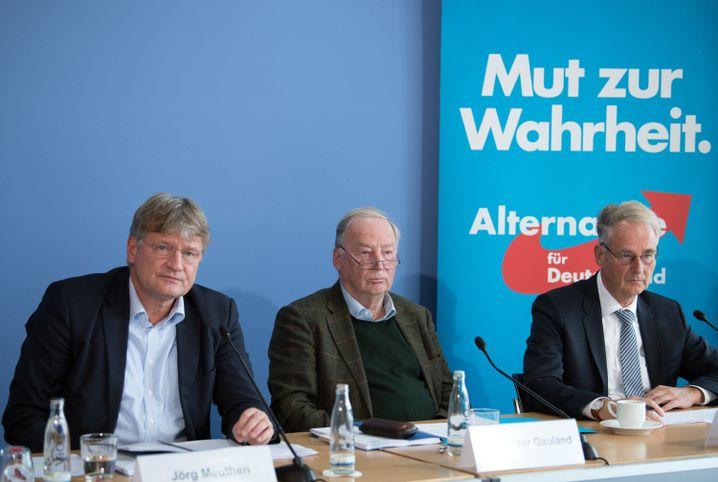 AfD-Politiker Meuthen, Gauland und Hartwig