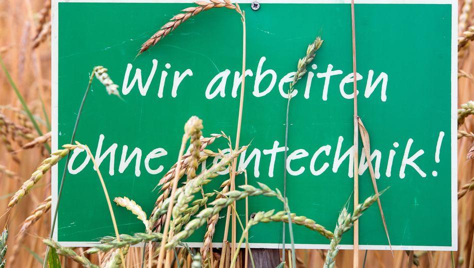 """""""Ohne Gentechnik""""-Kennzeichnung: Oft haben Strahlung und Chemie die Gene von Lebensmitteln verändert"""