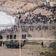 Videoaufnahmen zeigen Chaos in spanischer Exklave