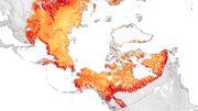 Vom Klimawunder zum Klimasünder