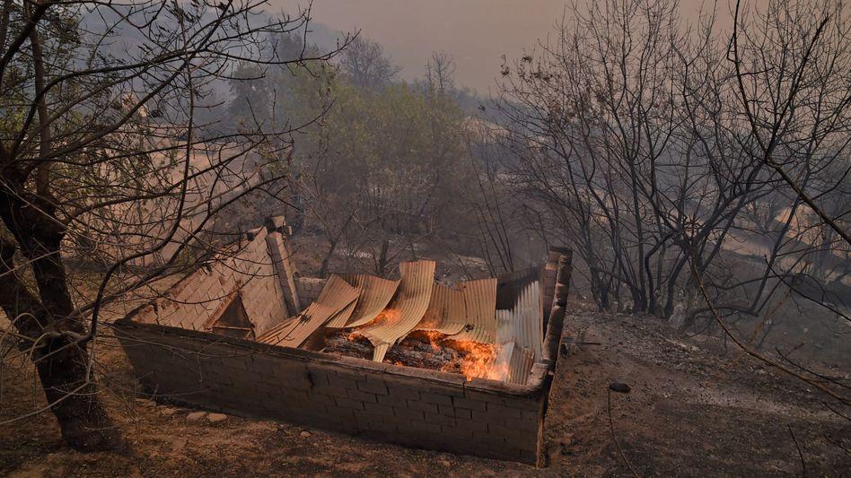 Feuer in der Region Kabylei, Algerien