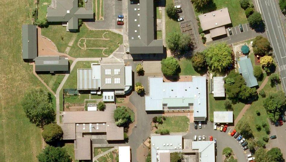 Das Fairfield College in Hamilton, Neuseeland: Penis-Symbole in den Rasen geritzt