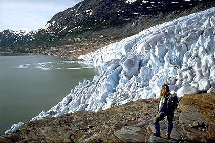 Großer Gletscher am Polarkreis: Der Svartisen erstreckt sich über eine Fläche von 370 Quadratkilometern bis zu den Fjorden der Küste