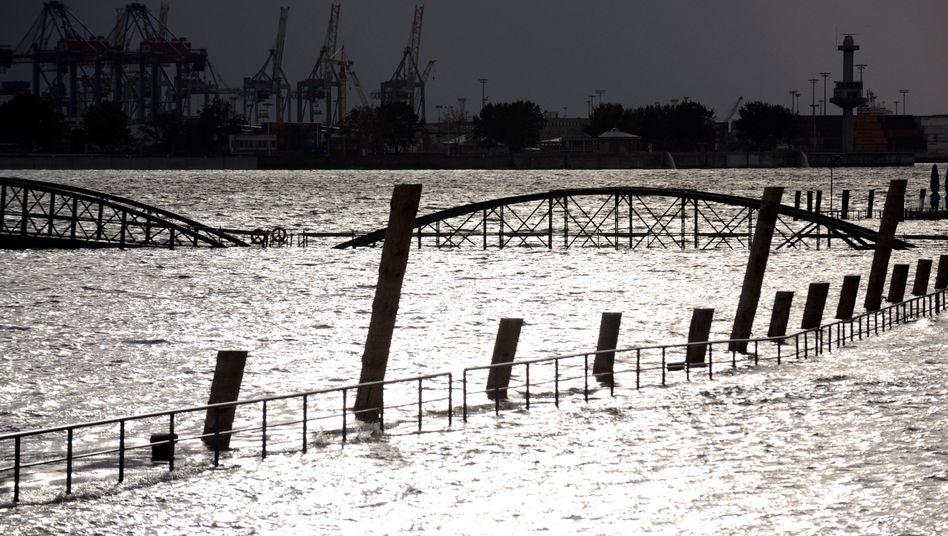 Elbehochwasser 2002 in Hamburg: Klimamodelle für regionale Vorhersagen sind gefragt