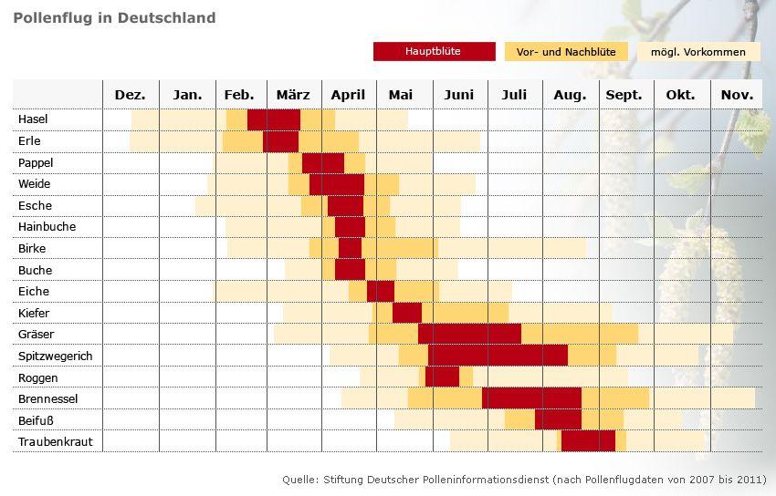 Grafik Kalender Pollenflug in Deutschland