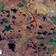 Größter Ölunfall nördlich des Polarkreises aus dem All zu sehen