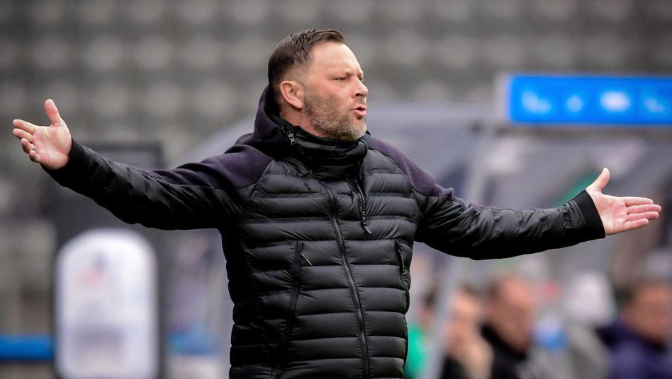 Pál Dárdai ist bei Hertha positiv getestet worden