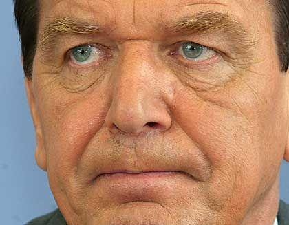 Kanzler Schröder: Sofortprogramm für Flutopfer