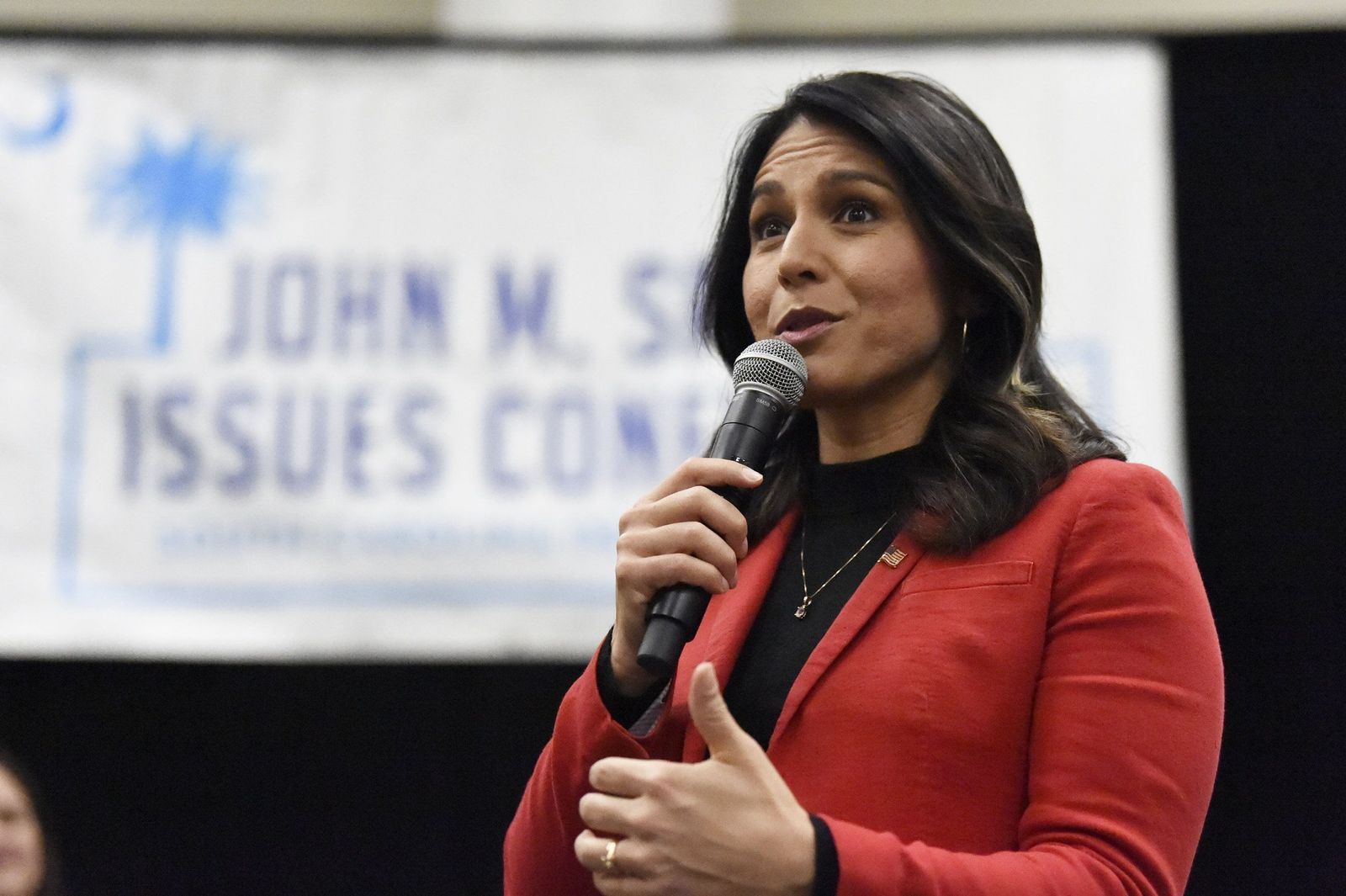 Election 2020 Gabbard