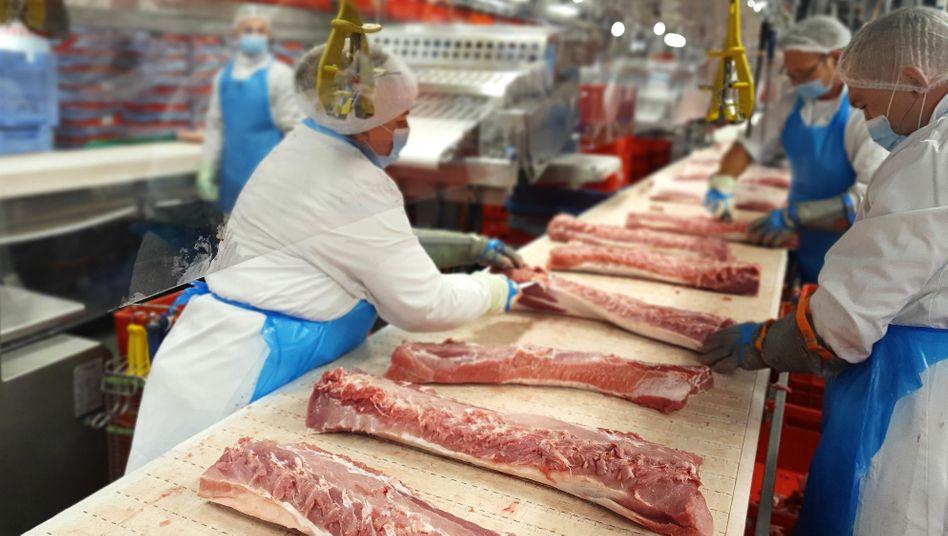 Produktion bei Tönnies in Rheda-Wiedenbrück (im Juli): Bis zu 30.000 Schweine am Tag durften geschlachtet werden