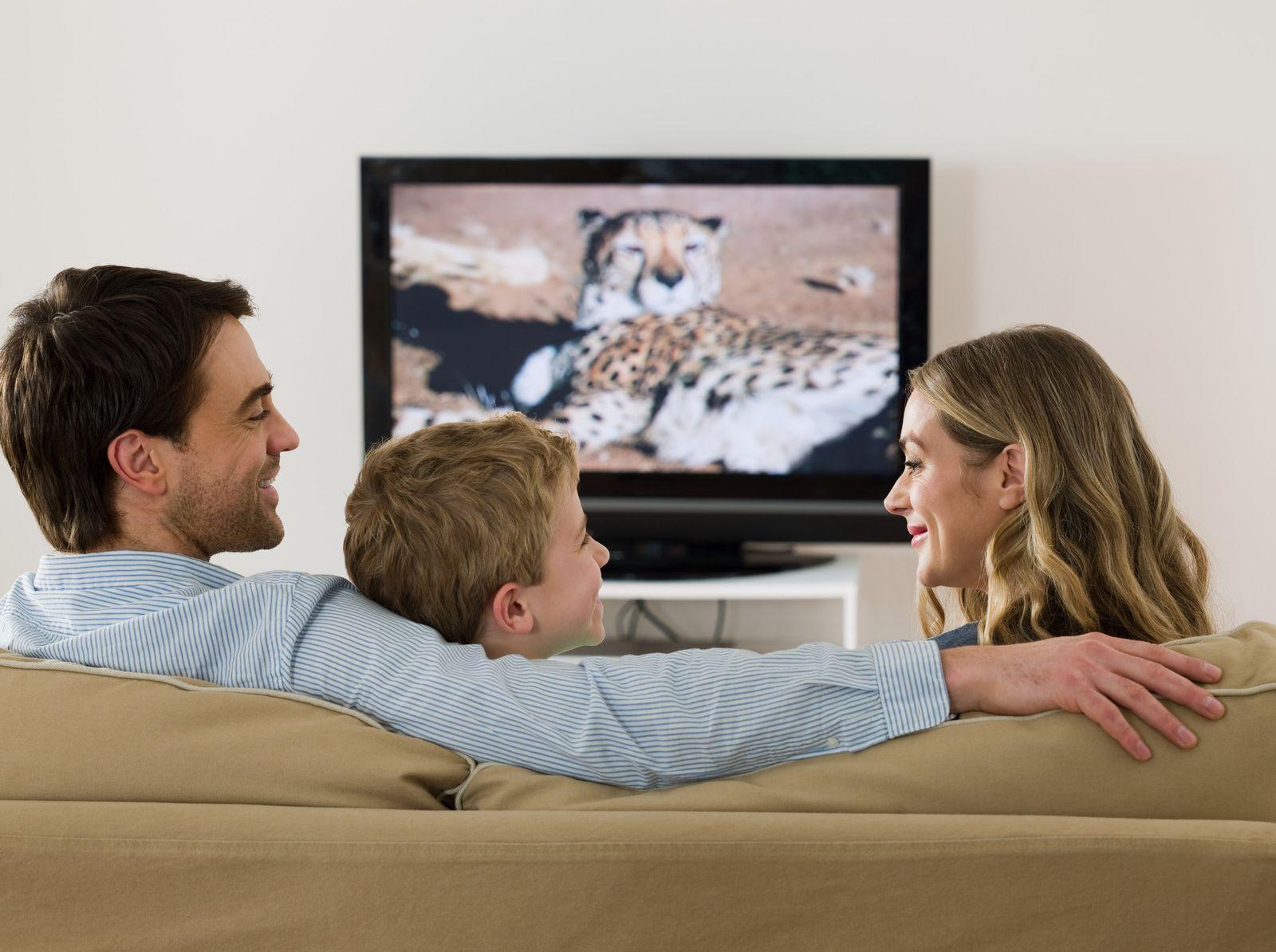 NICHT MEHR VERWENDEN! - Fernsehen/ Familie