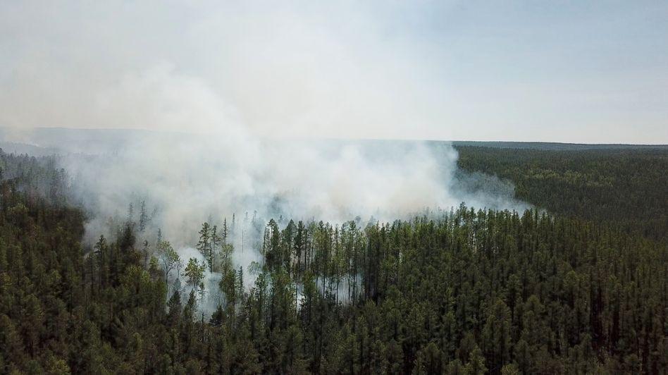 Brennende Wälder in der sibirischen Region Krasnoyarsk in Russland