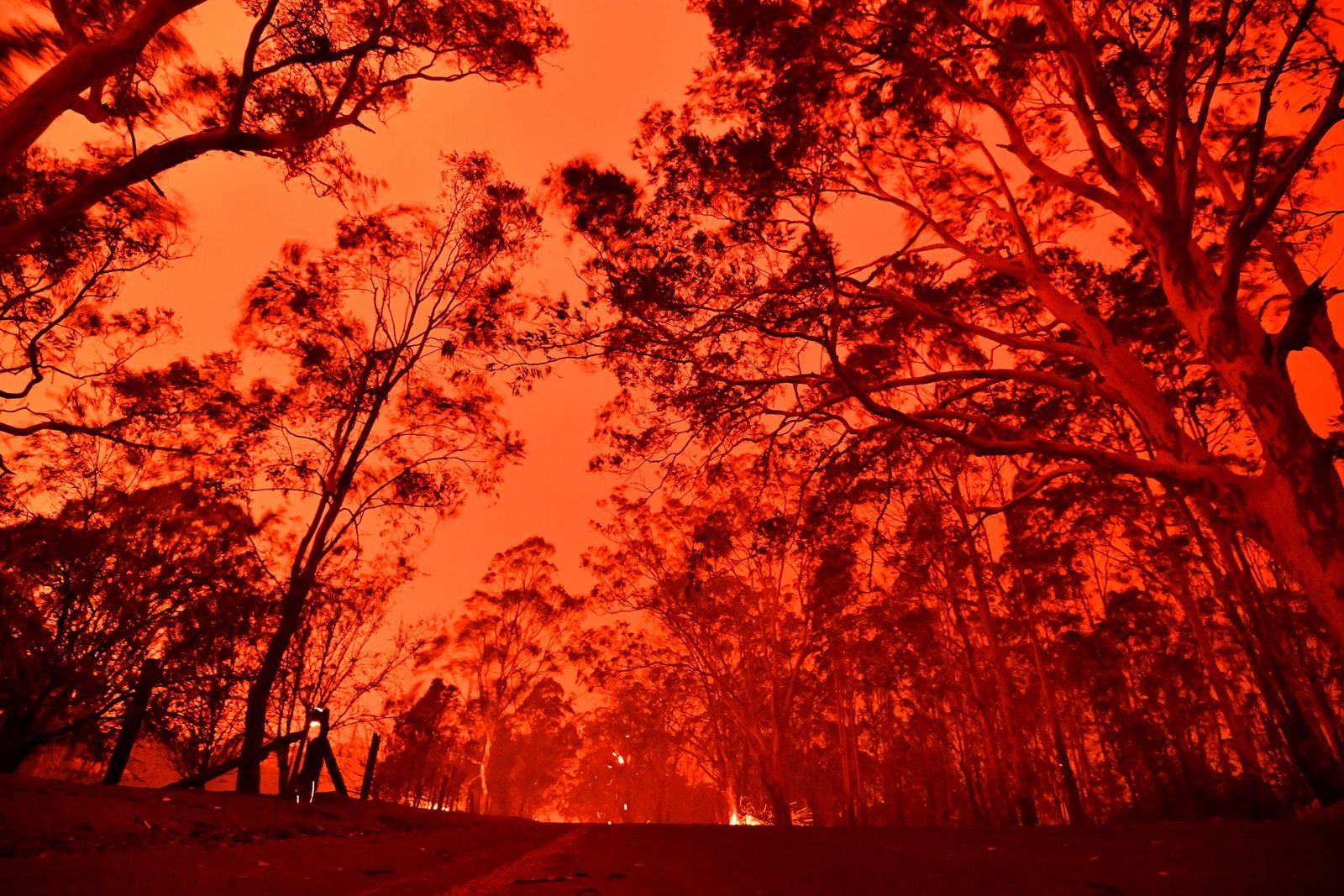 Australien Brände