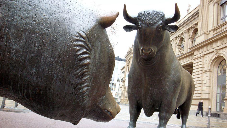 Börsenikonen Bulle und Bär: Anleihe zur Finanzierung von Umwelt- und Klimaschutzmaßnahmen