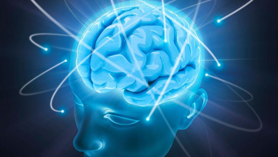 Rätsel Gehirn (Computergrafik): Schockierende Bilder wie eingebrannt