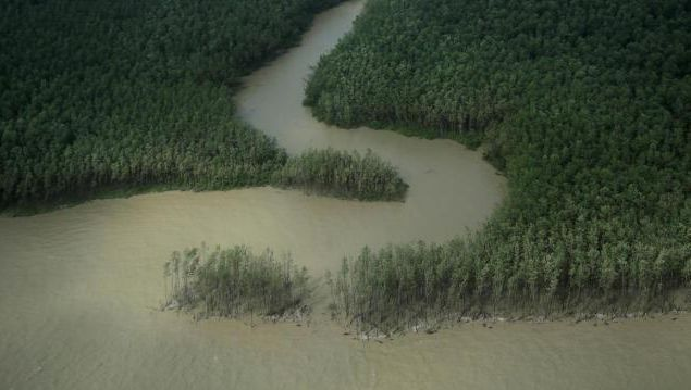 Amapa im Norden Brasiliens