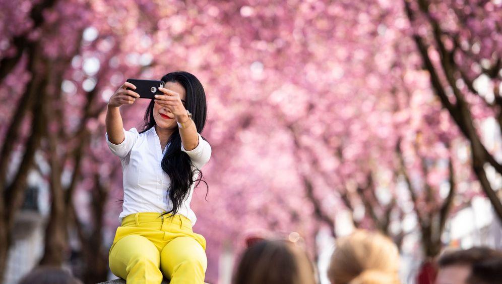 Bonner Blüte: Durch die rosarote Brille