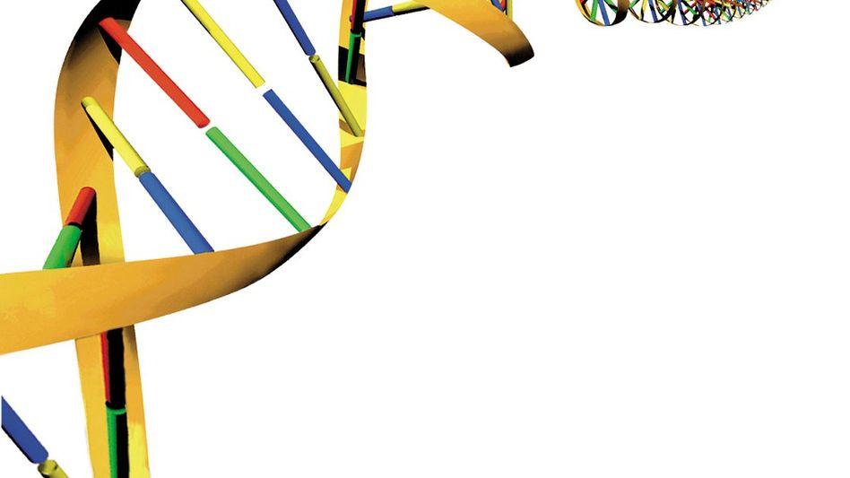 DNA-Doppelhelix (Zeichnung): Die Genophobie vieler Akademiker wird verschwinden