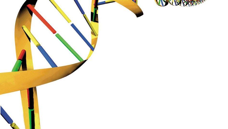 """DNA-Doppelhelix: """"Die Mutationsrate ist unsere Uhr"""""""