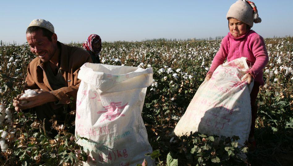 """Ein junges Mädchen hilft in China bei der Baumwollproduktion: """"Wesentlichen Werte und Normen zu betonen"""""""