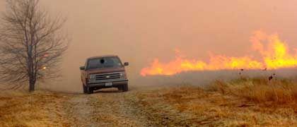 Auf der Flucht vor den Flammen: Ein Waldbrand in Texas hat sechs Menschen das Leben gekostet und 120.000 Hektar Land verwüstet