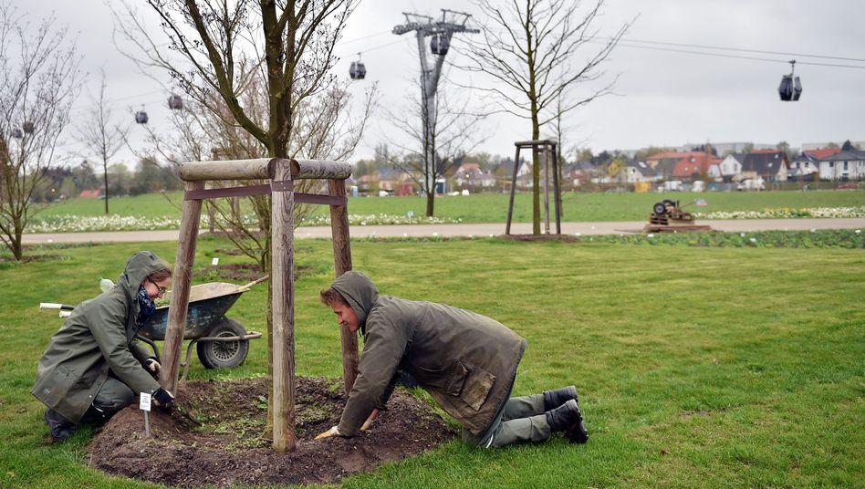 Parkpflege (auf der Internationalen Gartenausstellung): Auch als öffentliche Beschäftigung denkbar?