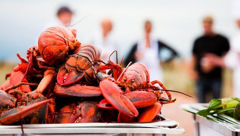 Einst war Hummer das Essen armer Leute. Heute ist es eine Delikatesse, die man in den Atlantik-Provinzen fangfrisch aufgetischt bekommt.