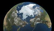 Hitzestress in der Arktis