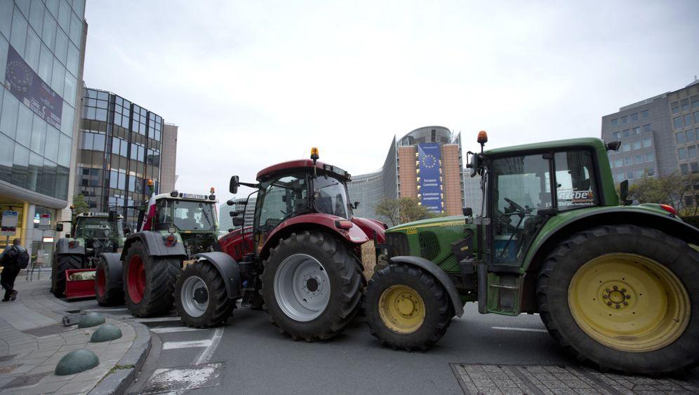 Brüssel Bauern-Demo: Proteste gegen billige Milch