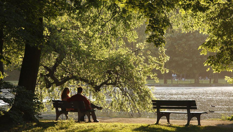 Parkbank im Englischen Garten in München