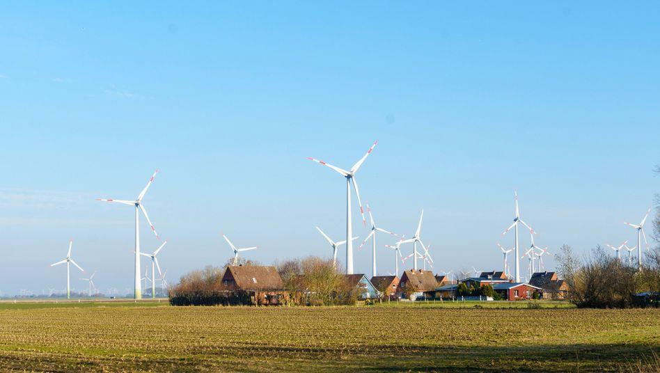 Windpark in Schleswig-Holstein: Wirtschaftsfaktor für die Region
