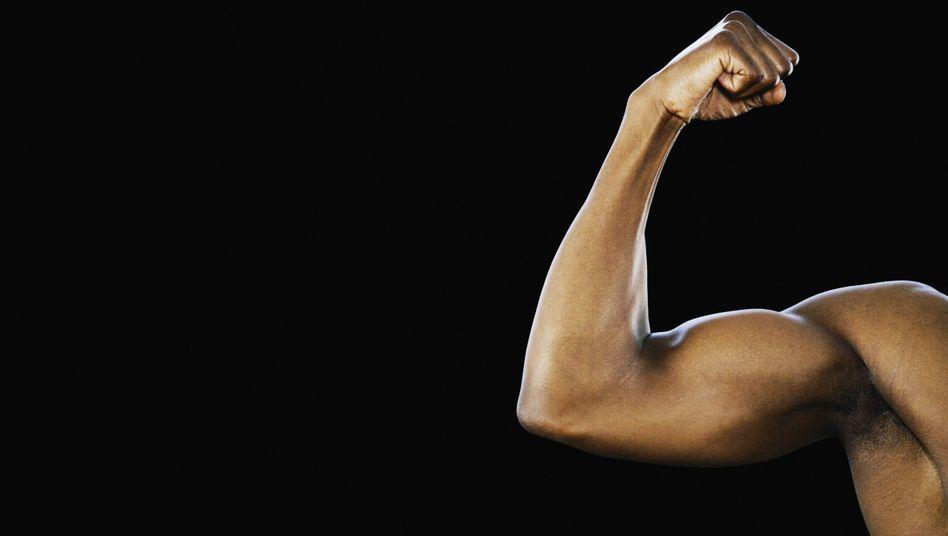 Gestählte Muskeln: Neben dem Sport spielt die Ernährung beim Muskelaufbau eine große Rolle