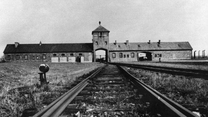 Forscher Raul Hilberg: Der Holocaust - Täter, Opfer, Zuschauer