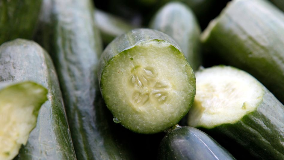 Suspicion has fallen on cucumbers again following the discovery of an infected cucumber in a garbage can in Magdeburg.