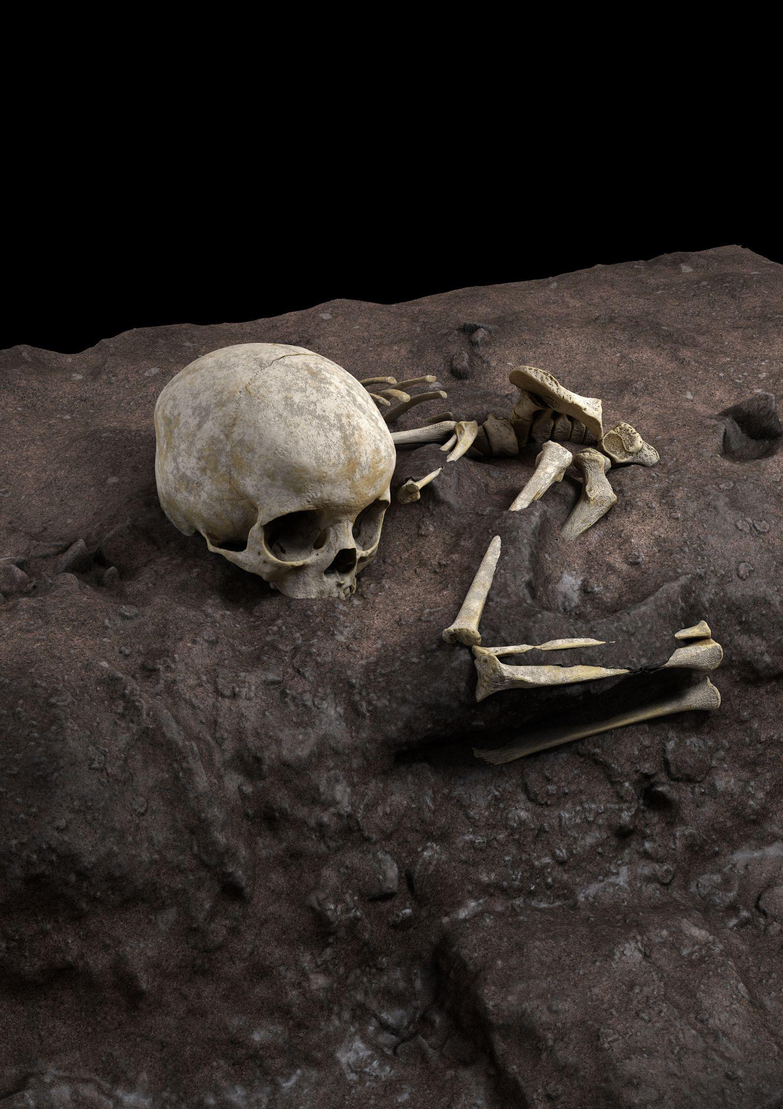 Virtuelle Rekonstruktion der Lage der Knochen