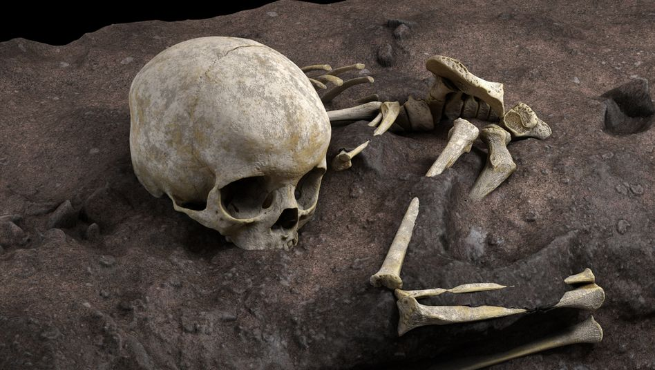 Funde in Kenia: Rekonstruktion der Knochenlage