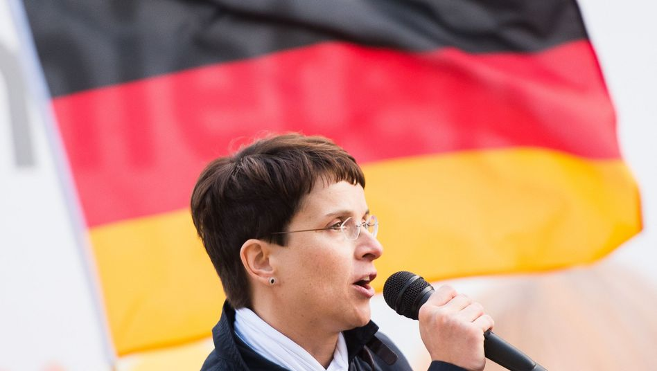 """AfD-Chefin Frauke Petry: """"Notfalls auch Grenzsicherungsanlagen"""""""