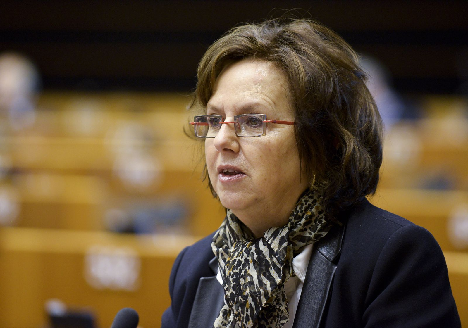 Dominique Bilde