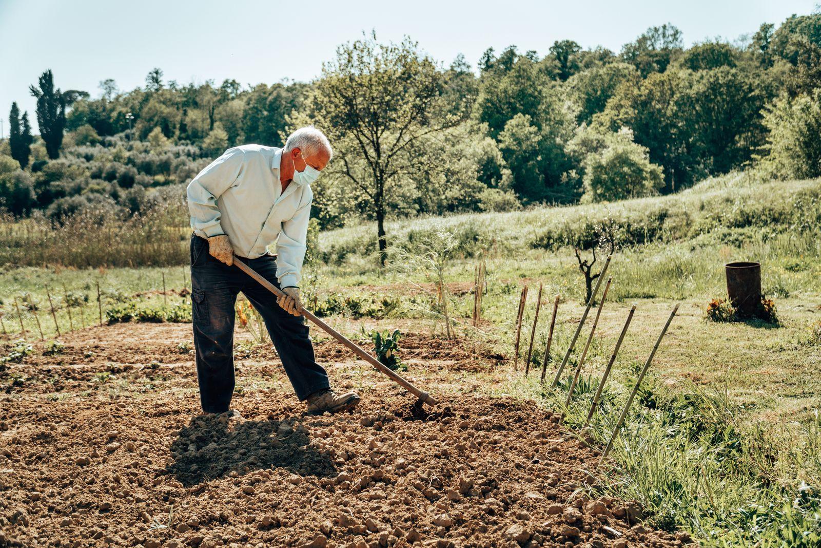 farmer during the corona virus