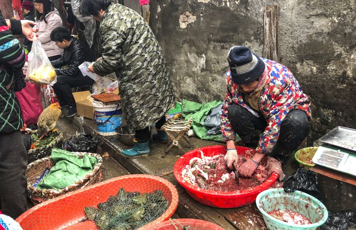 A traditional market in Wuhan: The virus only jumped to a human on one single occasion.