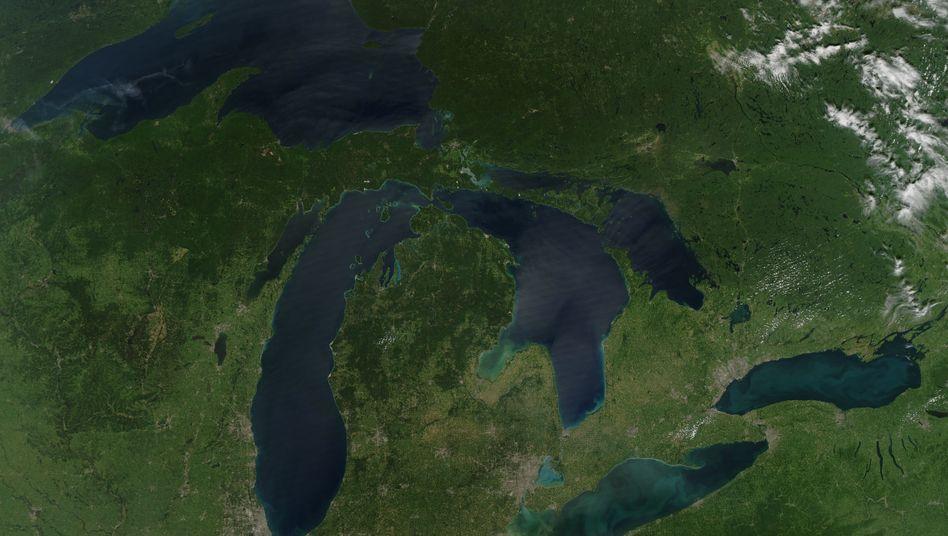 Das Satellitenbild zeigt die Algenblüte im Eriesee im Jahr 2010