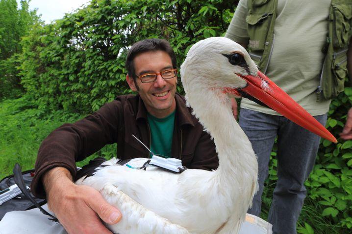 Martin Wikelski mit Storch