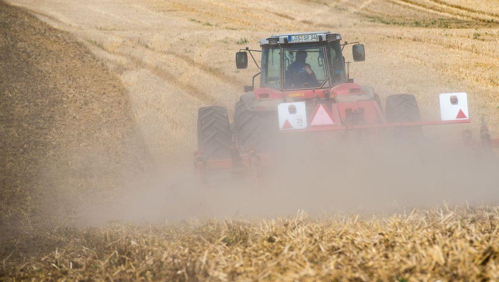 Dürre in Deutschland: 50 Zentimeter Staub