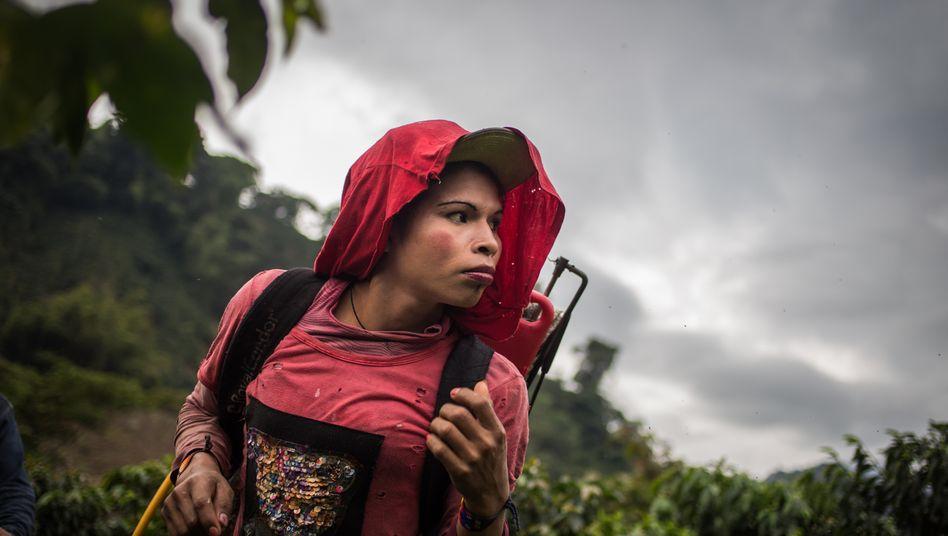Die 19-jährige Yuliana arbeitet auf einer Kaffeeplantage in der Nähe des Dorfes Santuario